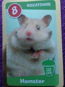 Hamsterul buclucas ascuns in penar